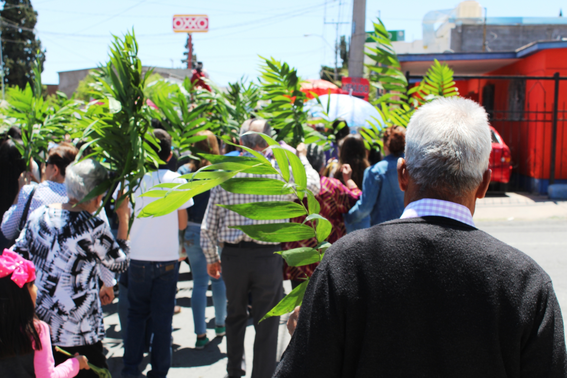 sunday of spring, palms, procession, people