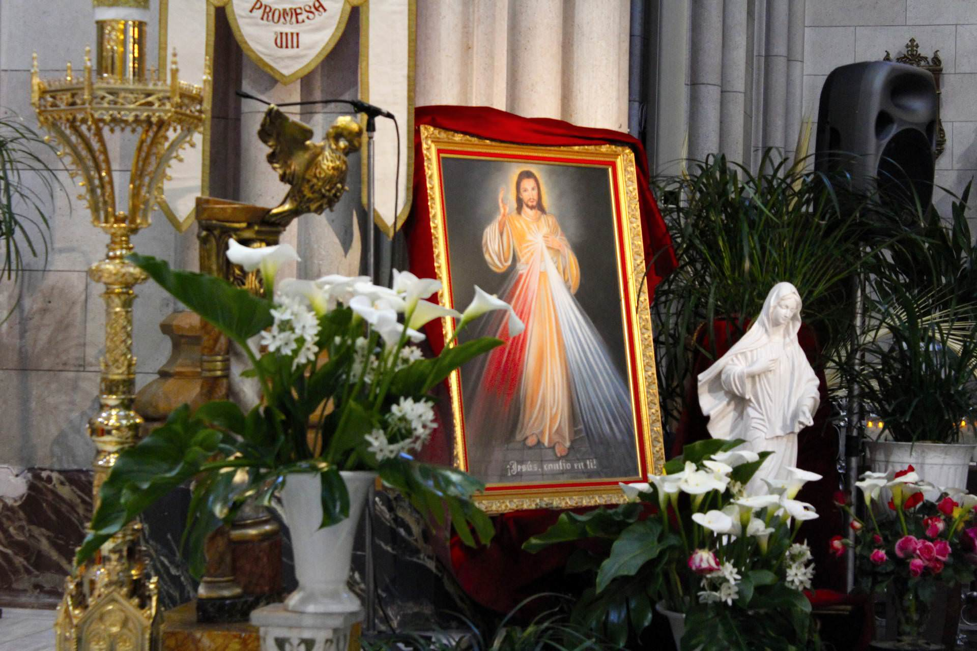 virgin, altar, flowers, jesus christ, mary, virgin mary, lord of mercy, merciful jesus, altar of mercy, solemnity, mary most holy