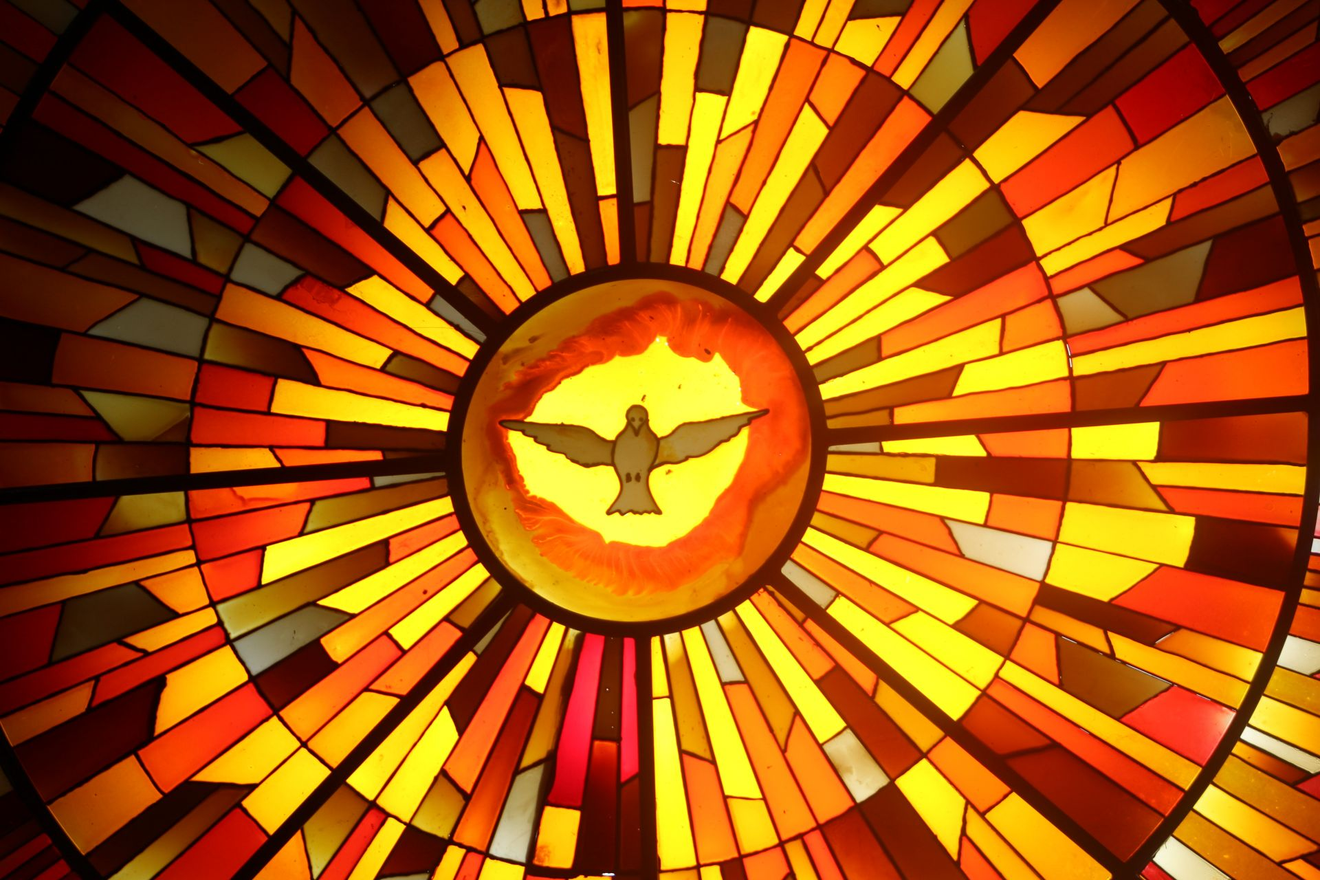 window, stained glass, dove, holy spirit, ghost, divine promise