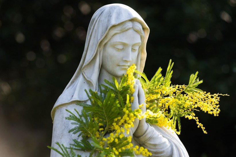 mother, maria, flower, diadelamadre