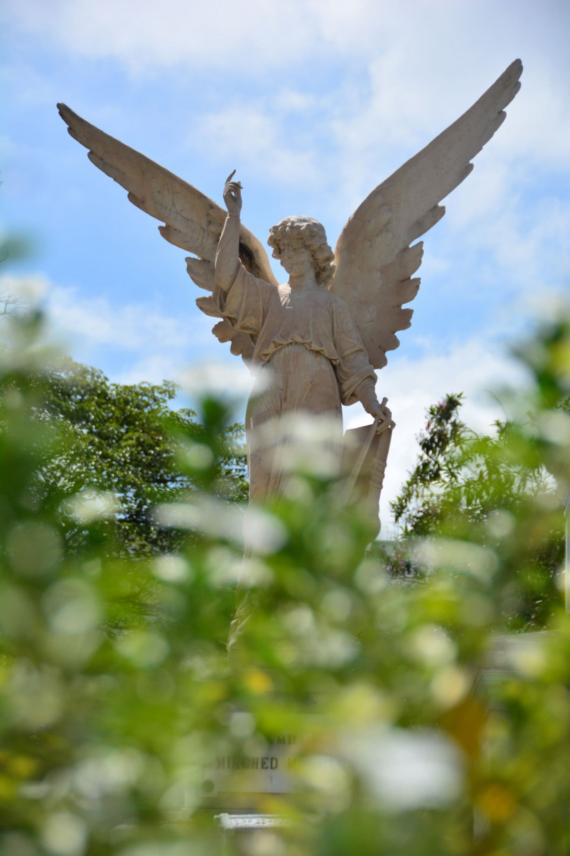 angel, statue, cemetery, adoracomunicacao, cemetery, angel