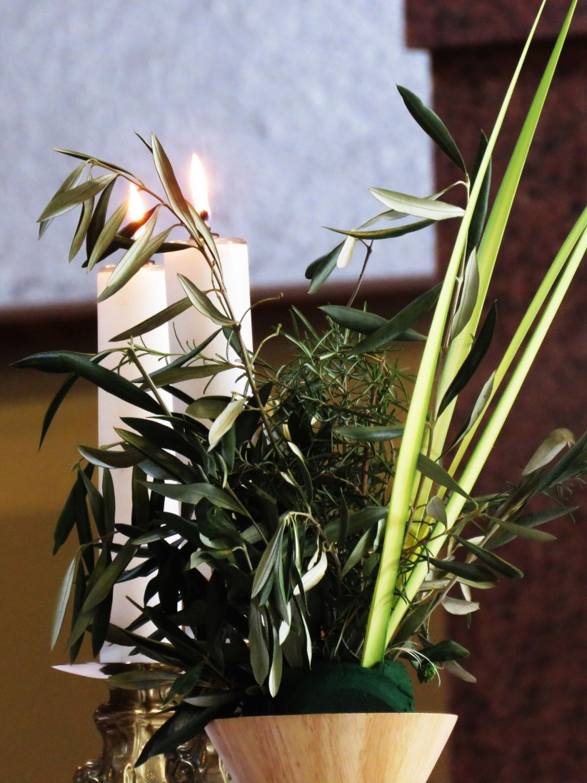 light, sailing, branch, fire, lent, easter, sunday of spring, palm