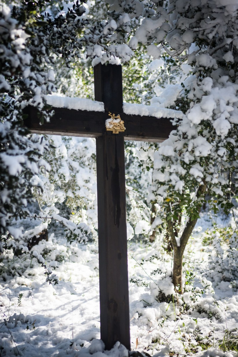 cross, christ, wood, jesus, salvation, passion, snow, viacrucis