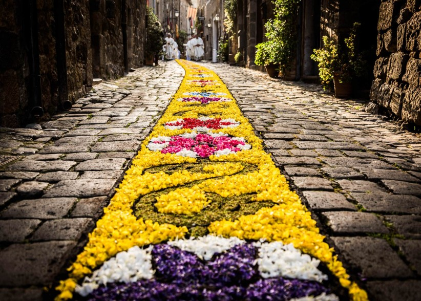path, flowers, body of christ