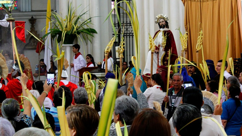 jesus, procession, temple, faithful, branches, entry, palms
