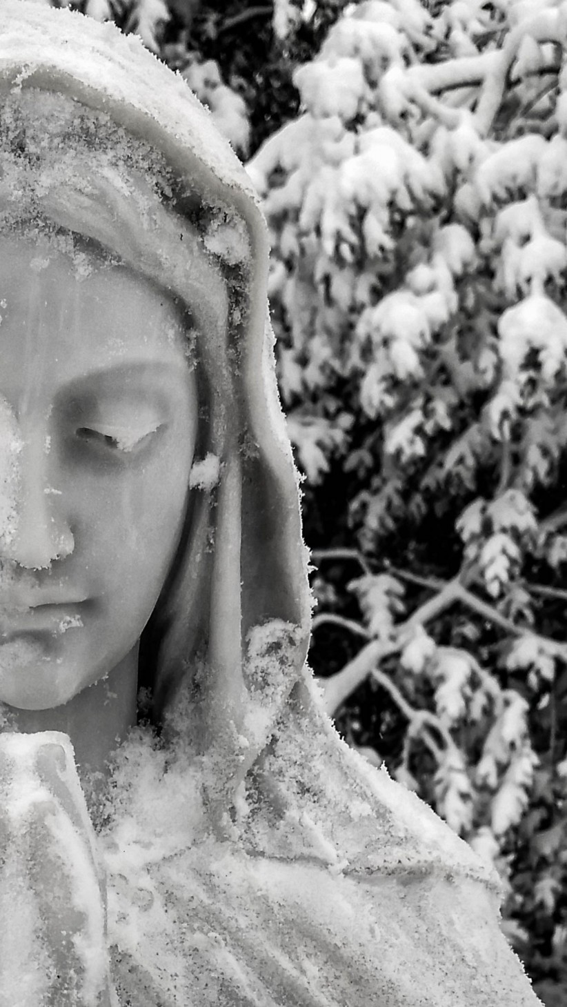 virgin, maria, nature, snow